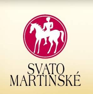 logo-sm-na_tz_v_3_v_300x